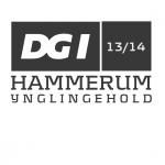 Efterskoletrøjer DGI Hammerum trykmotiv